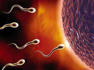 女性不孕不育要做的检查项目