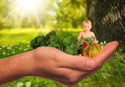 试管婴儿百科:3代试管婴儿
