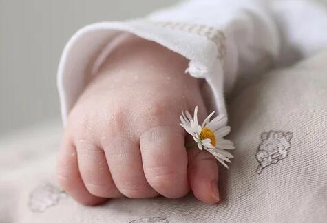 试管婴儿攻略提问:精子畸形率高的受孕几率