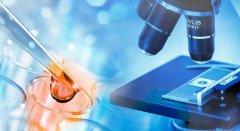 影响冷冻胚胎移植周期及移植成功率的可能因素