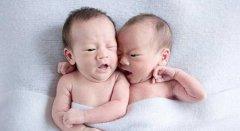 二胎政策的放开国内与国外试管大对比!!!到底选哪个?